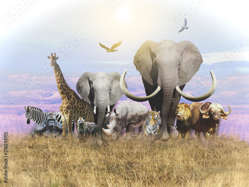 animals-of-africa-and-a-domestic-cat-leave-the-heat-wallpapers-for-walls-and-interior-3d-rendering
