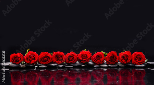 Poster Spa row of red rose and wet stones-black background