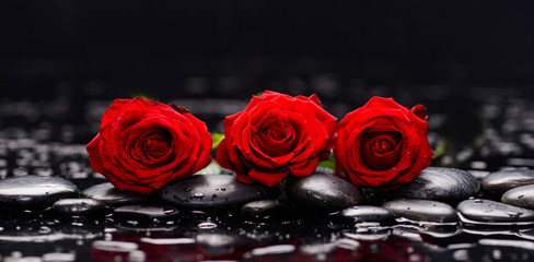 FototapetaStill life with three red rose and wet stones