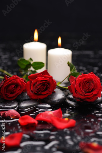Fotografie, Obraz  Still life with red rose, petals, with white candle ,green leaf and therapy ston