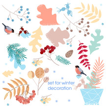 Vector Set Of Dried Branches And Grass. Winter Decoration For Postcards, Sticker