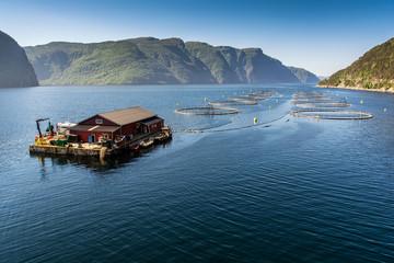 Norwegian fish farm