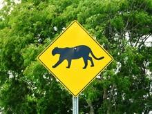 Road Sign Puma