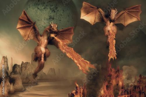 Foto auf AluDibond Drachen Dragon.