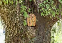 Hidden Fairy Door In A Tree