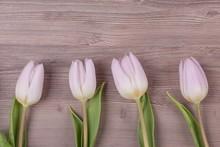 Four Pink Pastel Spring Love T...