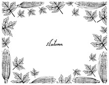 Autumn Tree, Illustration Fram...