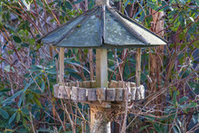 Old Bird Feeder Table