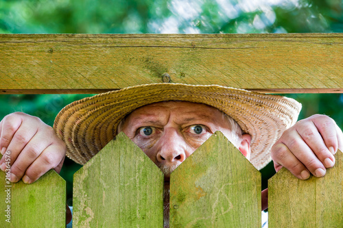 Cuadros en Lienzo  ein neugieriger Nachbar sieht über den Gartenzaun
