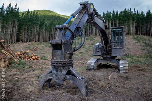 Fotografie, Obraz  Logging machinery at a forestry logging site