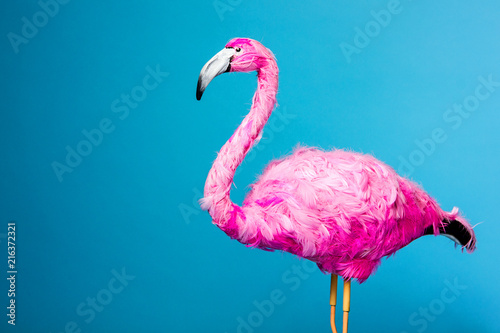 Fotobehang Flamingo trend ceramic pink flamingo on the blue wall background like graphic resource