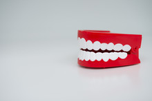 Gum Teeth Model On The White B...