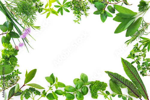 Fresh garden herbs isolated on white background