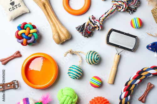 Flat lay composition with accessories for dog and cat on light background. Pet care