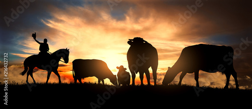 Photo A cowboy controls a herd of cows at sunset