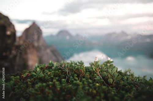 Foto op Plexiglas Grijze traf. Segla mountain in Norway