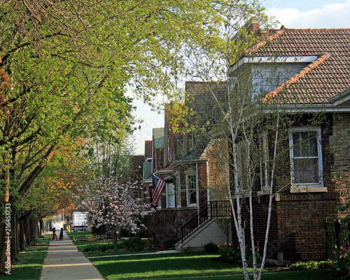Chicago Housing Stock