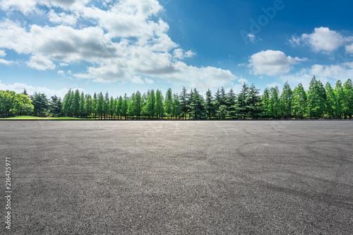 Fotografiet  Empty asphalt road and green forest landscape