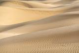Beautiful sand dune in Thar desert, Jaisalmer, Rajasthan, India.