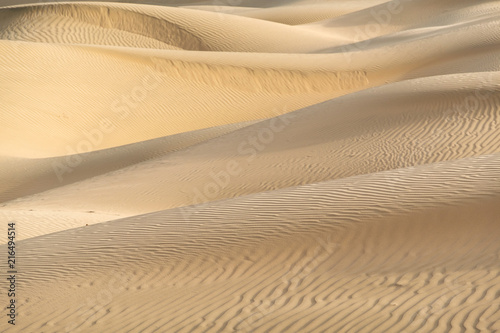 Photo Beautiful sand dune in Thar desert, Jaisalmer, Rajasthan, India.