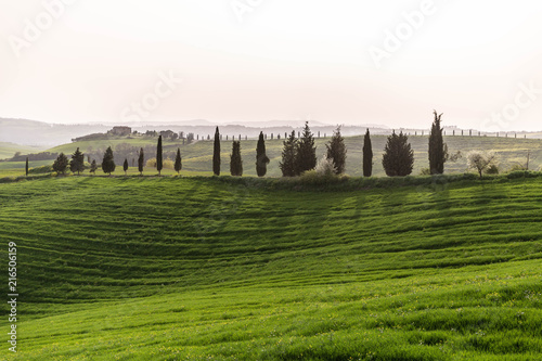 Spoed Foto op Canvas Toscane Hills of Tuscany