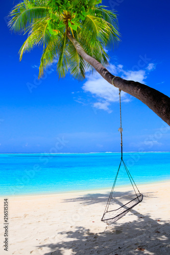 Dream beach with palm trees and swing on white sand and turquoise ocean Wall mural