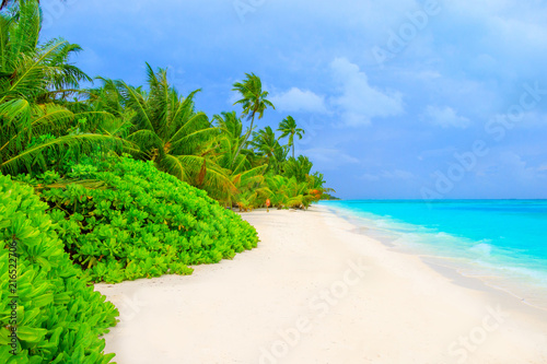 Staande foto Strand Dream beach with palm trees on white sand and turquoise ocean
