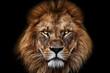 canvas print picture - Face Lion King