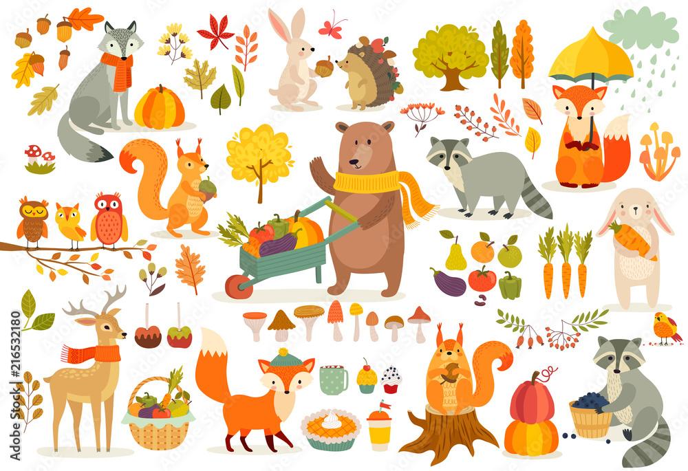 Fototapeta FAll theme set, forest Animals hand drawn style.