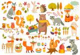 Fototapeta Fototapety na ścianę do pokoju dziecięcego - FAll theme set, forest Animals hand drawn style.