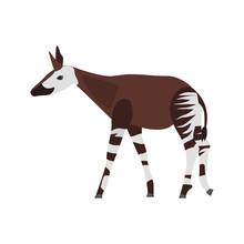 Okapi Color Vector Icon. Flat Design
