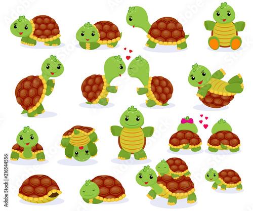 Photo Turtle vector cartoon seaturtle character swimming in sea and sleeping tortoise