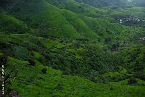 Fototapeta Lush green monsoon nature landscape mountains, hills, Purandar, Pune, Maharashtra, India  obraz na płótnie