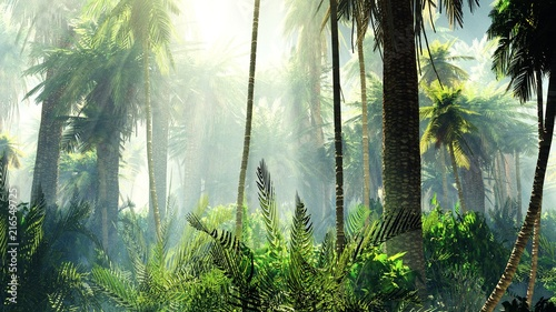 Foto Tropical jungle in the fog. Palms in the morning.