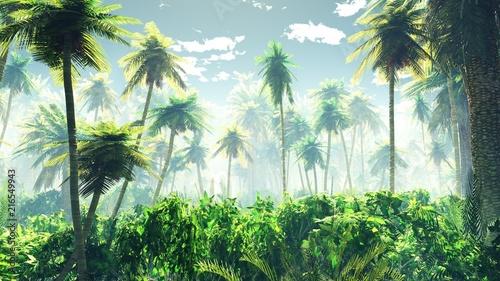 tropikalna-dzungla-we-mgle-palmy-w