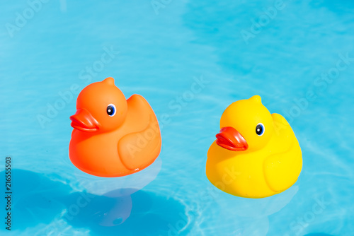 Fotografía  An orange and a yellow rubber duck swimming in the water in a paddling pool