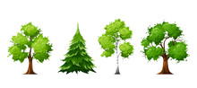 Vector Set Of Deciduous And Co...