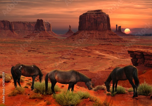 Staande foto Oranje eclat Horses at John Ford's Point Overlook in Monument Valley Tribal Park, Arizona USA