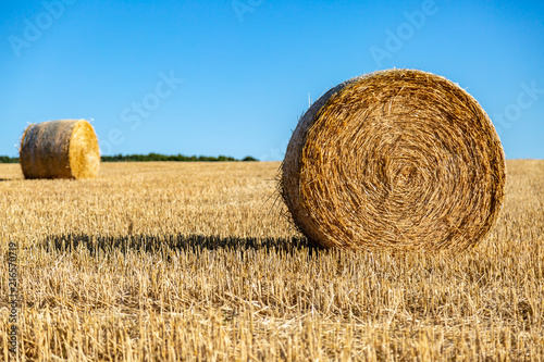 Foto op Aluminium Blauw Haybales in the Sussex countryside on a sunny summer's day