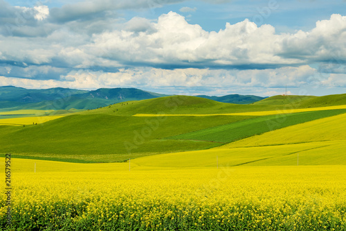 Hulunbuir grasslands of inner Mongolia.