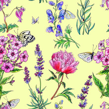 Seamless Pattern From Summer Flowers, Hand Drawing. Decorative Background Of Peony, Aconite, Lavender, Phlox, Dicenters And Butterflies.