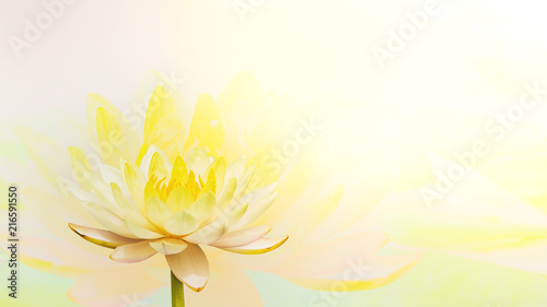 Photo Stands Lotus flower sweet color lotus in soft color and blur style on mulberry paper texture