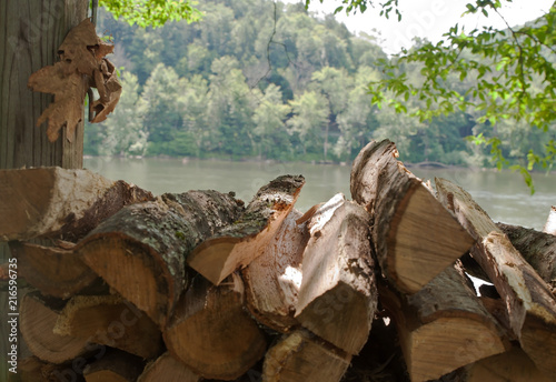 Cut, split and stacked firewood piled up by the Allegheny River in Warren County Canvas Print