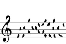 Abstract Music Stave With Birds