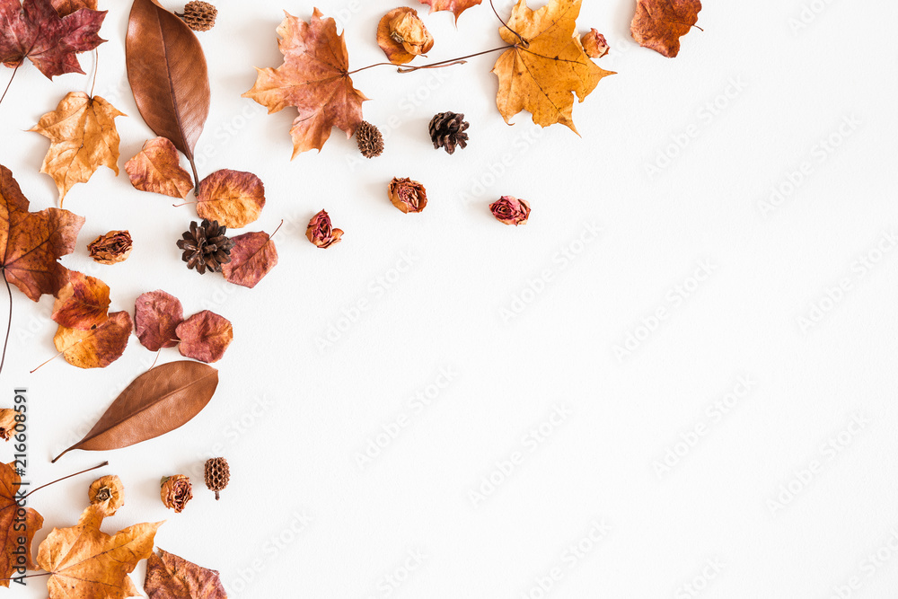 Fototapety, obrazy: Autumn composition. Frame made of autumn dried leaves on white background. Flat lay, top view, copy space