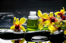 Yellow Orchid With Black Stones With Bottle Of Oil ,plant On Wet Pebbles