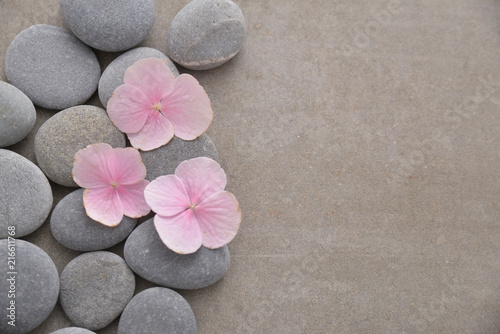 Staande foto Spa Three Pink hydrangea petals with pile of gray stones on gray background