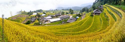 Deurstickers Honing Vietnam terrace rice field
