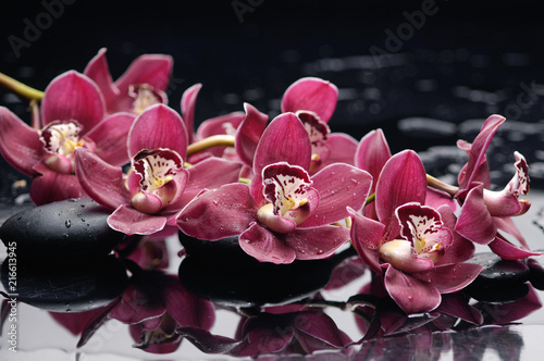 Fotografie, Obraz  Red branch orchid on black stones reflection