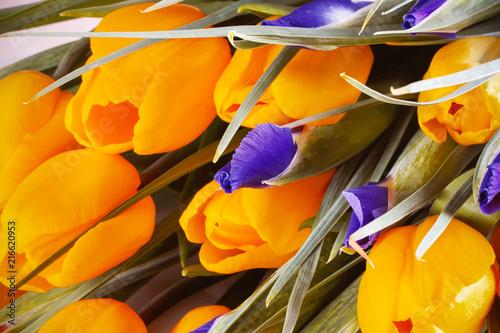 тюльпаны весенние и цветы ирис в букете